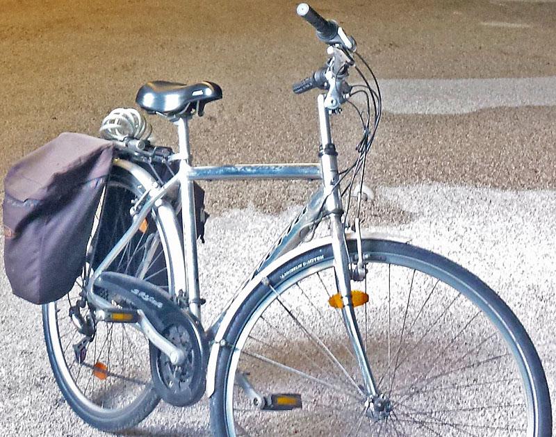 Bicicletta Esperia 20